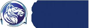 internetagentur-loewenstark-logo